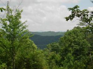Bullet Mountain Drive, Tellico Plains, TN 37385
