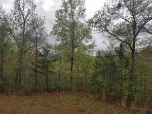 Summit Trails Lot 32 Drive, Sevierville, TN 37862