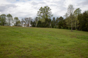 Large lot on a quiet street in Corryton. Beautiful country setting. This is the perfect place to build your dream home.