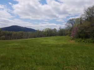 776 Cardwell Ridge Rd, New Tazewell, TN 37825