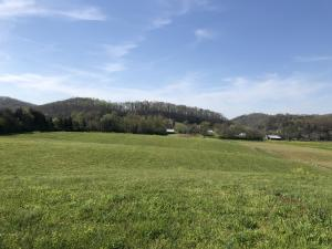 Mountain View Rd, Heiskell, TN 37754