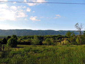 2575 Rackum Rd, Thorn Hill, TN 37881