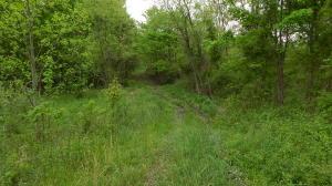 Sassafras Lane, Pioneer, TN 37847