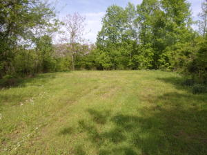 0 Highrise & Watersedge Drive, 0, Baneberry, TN 37890