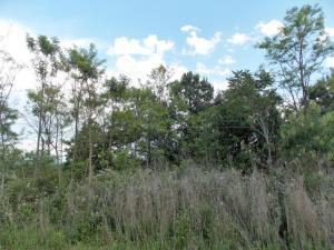 Eagle Ridge Point, Philadelphia, TN 37846