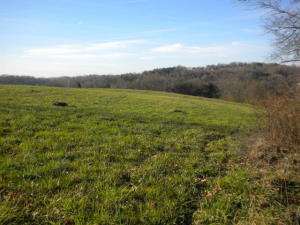 Glen Creek Rd, Knoxville, TN 37924