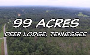 Old Deer Lodge Pike, Deer Lodge, TN 37726
