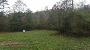 Black Fox Rd, Washburn, TN 37888