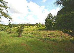 Tr1a Lillard Allen Ln, Sevierville, TN 37876