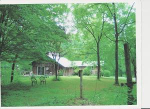 505 East Bull Run Valley Drive, Heiskell, TN 37754