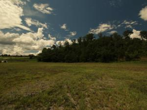 2 Bear Ln, Tellico Plains, TN 37385