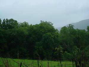 Highway 297, Pioneer, TN 37847