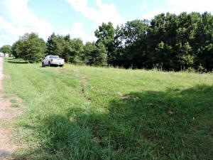 Roy Messer Highway, White Pine, TN 37890