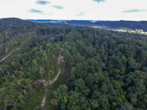 Brooks Gap Rd, Clinton, TN 37716