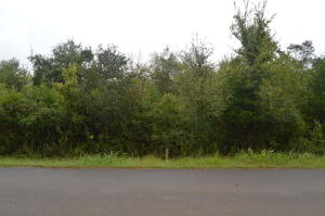 Lot 4 Elder Lane, Kodak, TN 37764