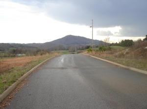 L 21 Elaine Drive, Tazewell, TN 37879