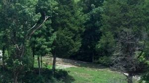 Lake Hollow Rd, Speedwell, TN 37870