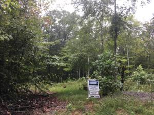 Cody Lane, Maynardville, TN 37807