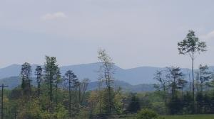 Tract 3 Fairview Rd, Tellico Plains, TN 37385