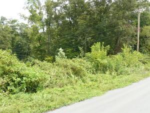 Lot 17 Lookout Drive, Rutledge, TN 37861