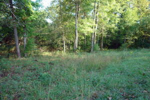 Golf Club Lane, Crossville, TN 38555