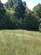 Marble Point Way, New Tazewell, TN 37825