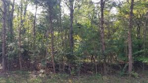 109 River Point Drive, Lenoir City, TN 37772