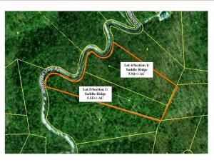 11+/-AC Tract comprised of 2 Lots (4 and 5) Section 1 Saddle Ridge