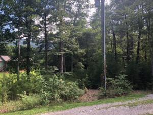 Lot 20 Roy Lee Way, Seymour, TN 37865