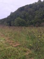 Upper Caney Valley Rd, Tazewell, TN 37879