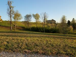 110 Coyote, Rockwood, TN 37854