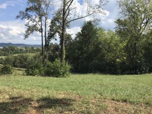 0 Arcadia Peninsula Way, Knoxville, TN 37922