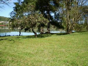 8005 River Drive, Oak Ridge, TN 37830