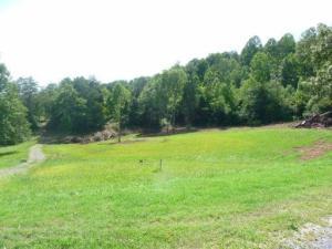 605 Gamble Drive, Heiskell, TN 37754