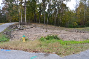 Nice Corner Lot: Trees have been removed-fire Hydrant on lot