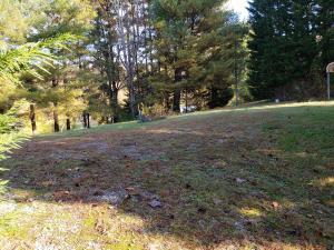 Self Hollow Rd, Rockford, TN 37853