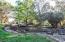 Park like setting for backyard
