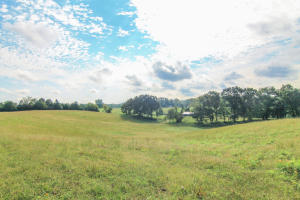 Lot 3 Lovelace Rd, Knoxville, TN 37932