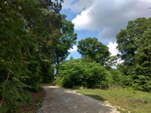 Fortune Rd, Talbott, TN 37877