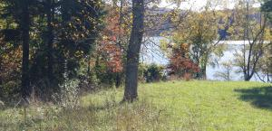 Lot 12 Emory River Rd, Harriman, TN 37748