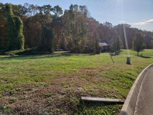 Lot 95 Cow Poke Lane, Rutledge, TN 37861