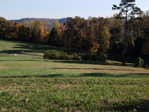 Lot 98 Cow Poke Lane, Rutledge, TN 37861