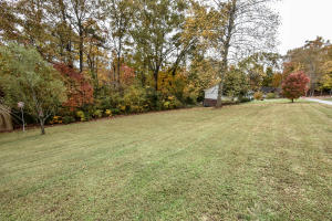 Badger Drive, Andersonville, TN 37705