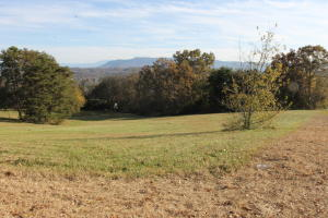 804 Bridle Court, Seymour, TN 37865