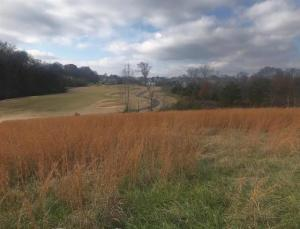 Welcome to 1201 Kahite Trail- a great golf front lot with a long fairway view.
