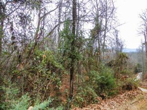 George Harrison Way, Seymour, TN 37865