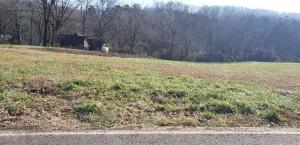 424 W Ford Valley Lot 2 Rd, Knoxville, TN 37920