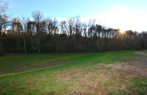 Lot 16 Deer Meadows Rd, Sevierville, TN 37862