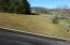 407 Wood Duck Drive, Vonore, TN 37885