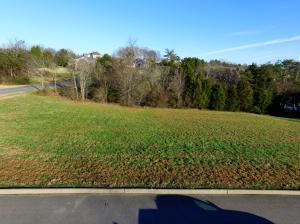 107 Rock Point Drive, Vonore, TN 37885